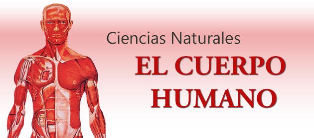 Ciencias Naturales - El Cuerpo Humano | Historia, Literatura ...