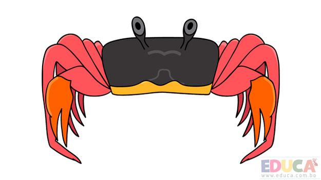 Dibujo de cangrejo - educa.com.bo
