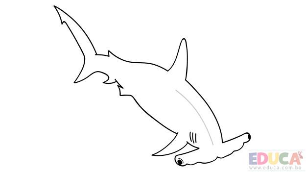 Dibujo de tiburon martillo para colorear - educa.com.bo