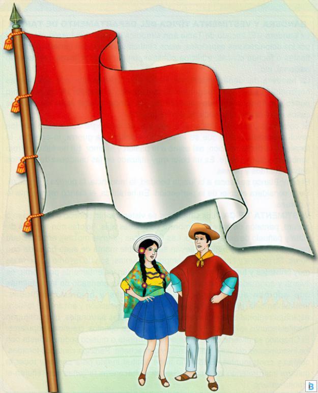 bandera y vestimenta típica de tarija