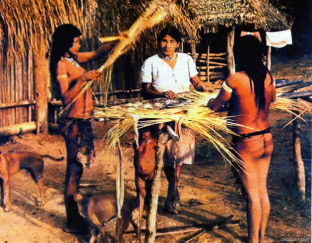 Los Chiquitanos