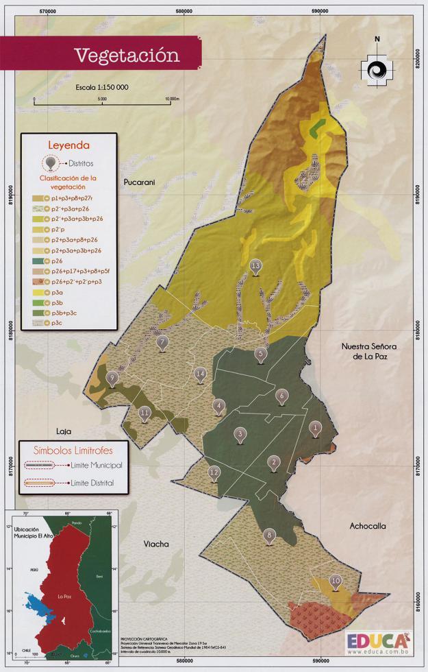 Mapa Vegetación del Municipio de El Alto - La Paz, Bolivia.