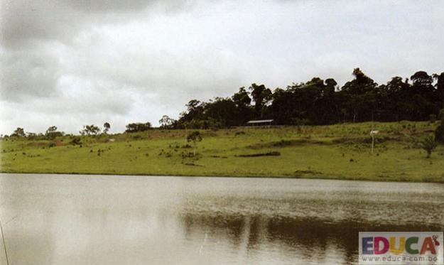 Comunidad Nuevo Triunfo - Cobija, Pando - Bolivia