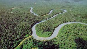Datos Generales de Pando - Cobija jardín amazónico